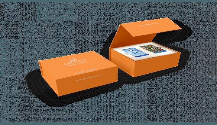 Boîte échantillons des cartes PVC